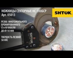 Ножницы Секторные НС-100БСР