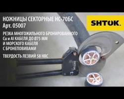 Ножницы Секторные НС-70БС